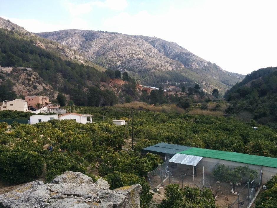 Landschaft Alicante - Rundreise (2)