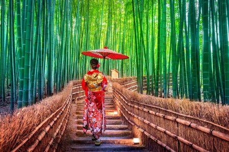 Bamigo Kleidung aus Bambus